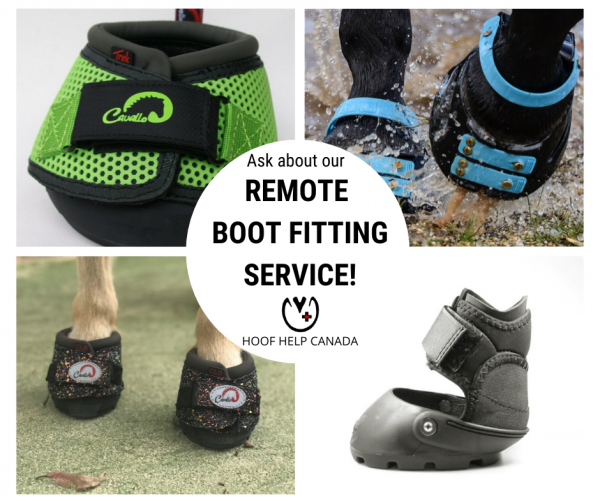 four hoof boots are featured showcasing Cavallo, Scoot Boot and Easycare. Text in the center reads Remote Boot Fitting Service,