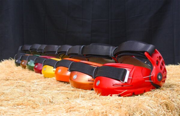 Renegade Classic Hoof Boots - All colours in a line