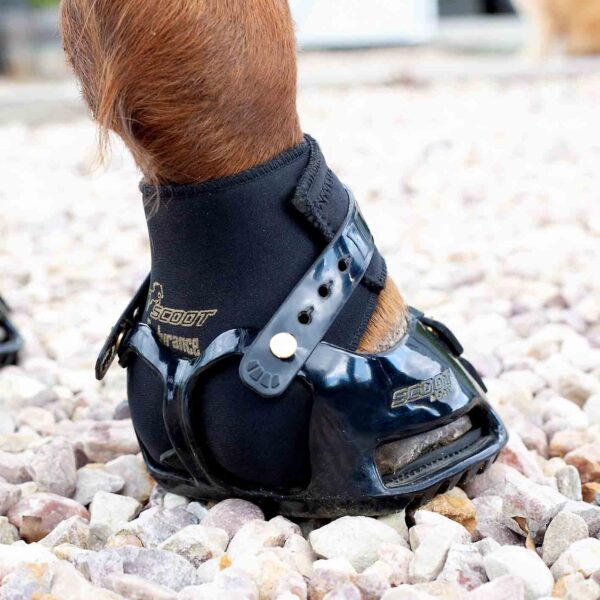 Scoot Boot endurance gaiter in a scoot boot