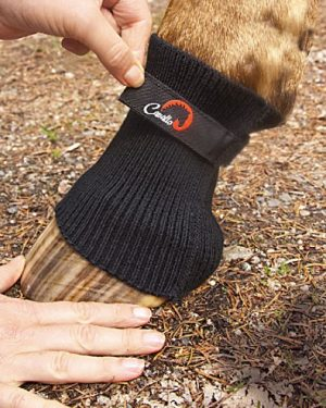 close up view of horse hoof wearing cavallo comfort sleeve with human hands adjusting velcro closure